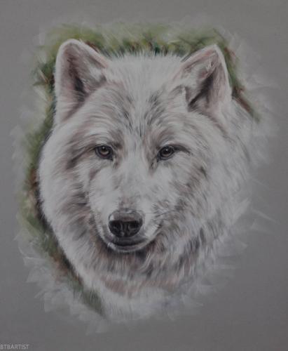Arctic wolf pastel