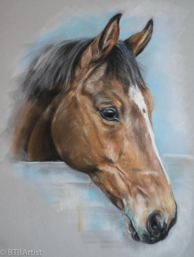 Pastel horse